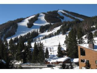 Winter Park Place #14: 2-bedroom condo, walk to lifts - Winter Park vacation rentals