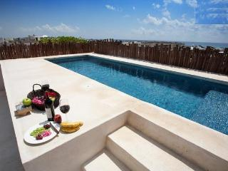 20% off 2 bdrPenthouse till March 20th. 2012 - Playa del Carmen vacation rentals