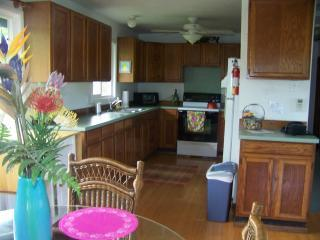 Kauai vacation rental Kapaa downtown `Ohi`a Kai ! - Kapaa vacation rentals