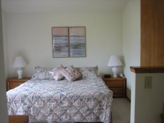 Master Bedroom, attached bathroom, walk in closet, and balcony - 3 Bedroom Home at Mountainside in Frisco - Frisco - rentals