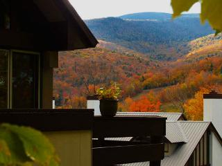 .Chalet in Coolidge Falls - Lincoln vacation rentals
