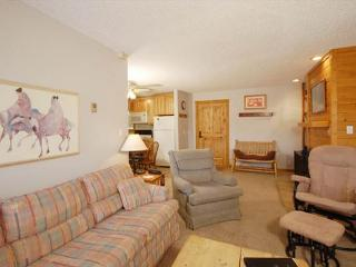 RidgeCrest Condominiums - R104B - Steamboat Springs vacation rentals