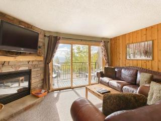 Scandinavian Lodge and Condominiums - SL103 - Steamboat Springs vacation rentals