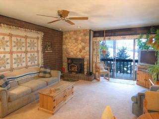 Ski Time Square Condominiums - ST407 - Steamboat Springs vacation rentals