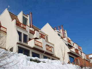 Storm Watch Condominiums - SW104 - Steamboat Springs vacation rentals