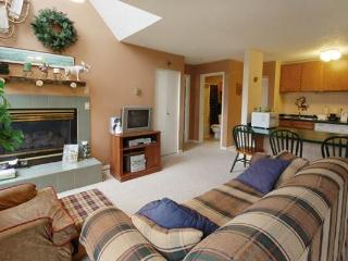 Storm Watch Condominiums - SW212 - Steamboat Springs vacation rentals
