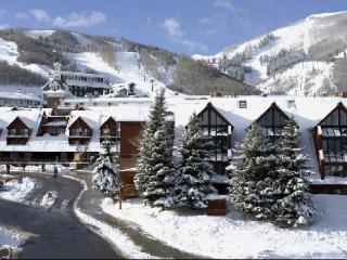 Lodge at Mountain Village 208 - Park City vacation rentals