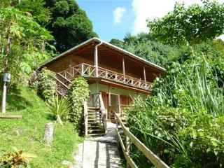 Carpe Diem Villa.The great escape with sunsets! - Tobago vacation rentals