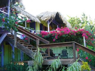 Casa Beya: Colorful, private BEACHhouse: dock&wifi - Seine Bight Village vacation rentals
