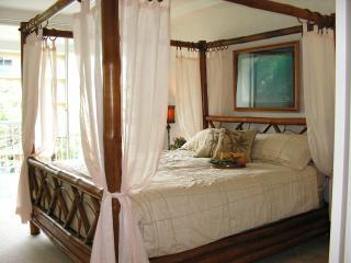 The Whaler on Ka'anapali Beach ~ Affordable Luxury - Kaanapali vacation rentals