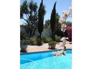Gorgeous Ranch House with pool and huge garden - North Hollywood vacation rentals