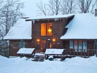Northern Lights - Upper Peninsula Michigan vacation rentals