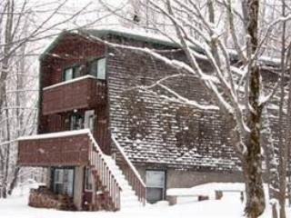 Bear Summit - Upper Peninsula Michigan vacation rentals