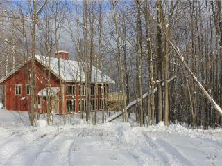 Slideaway - Upper Peninsula Michigan vacation rentals