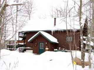Ski Inn - Upper Peninsula Michigan vacation rentals