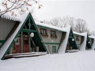 Bear Hug - Upper Peninsula Michigan vacation rentals