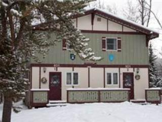 Quiver Inn 1 - Ironwood vacation rentals