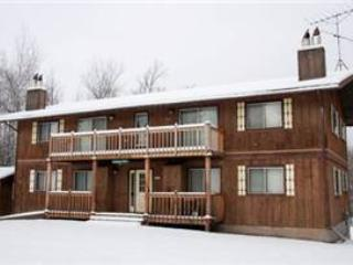 Schnickelfritz 1 - Upper Peninsula Michigan vacation rentals