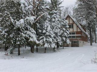 Dancing Bear - Upper Peninsula Michigan vacation rentals