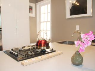 Luxury One Bedroom Apartment in Best Location - 2 blocks to metro - Washington DC vacation rentals