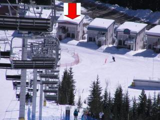 Ski-in/Ski-out - 4bdr/4bath - Silver Star Resort - Silver Star Mountain vacation rentals