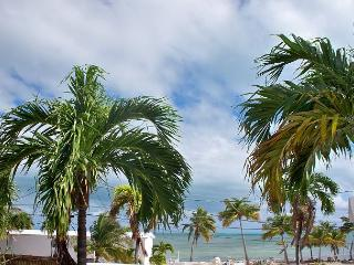 Manatee Manor - Key West vacation rentals