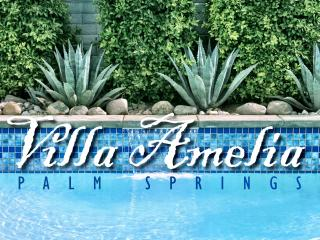 Villa Amelia w/Mt.View from Private Pool & Spa! - Palm Springs vacation rentals