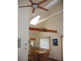 45 Hamblen Way - Last Minute Specials, Pet Friendly, Free Tennis! - Edgartown - rentals