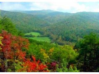 Breathtaking Valley & Mountain Views, Huge Deck! - Blue Ridge vacation rentals