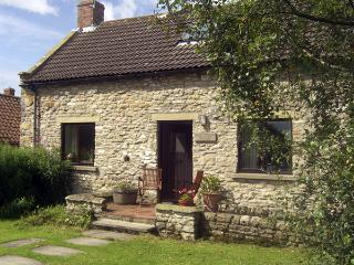DAIRY HOUSE, pet friendly, character holiday cottage, with a garden in Newton Upon Rawcliffe, Ref 67 - Pickering vacation rentals