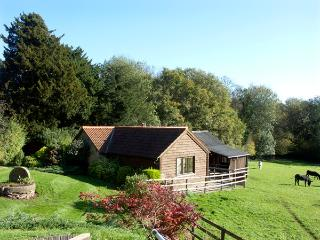 HEALER'S COTTAGE, pet friendly, character holiday cottage, with a garden in Hoarwithy, Ref 1806 - Herefordshire vacation rentals