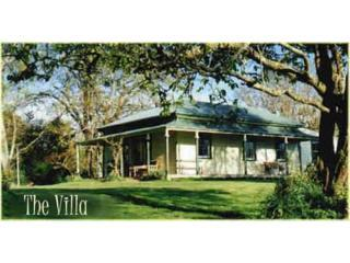 Century old bungalow, the Colonial Villa - New Zealand vacation rentals