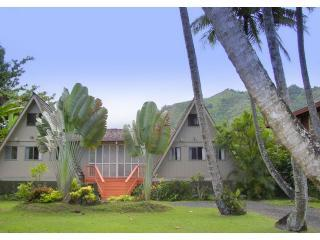 Hale Lani in Ha'ena - Haena Great Views Large Home next to Tunnels - Haena - rentals