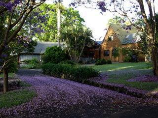 Byron Bay Hinterland farmhouse and separate studio - Federal vacation rentals