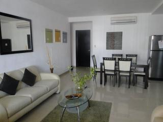 Spacious living room, fully furnished apartment, three blocks from the beach - Lovely 2 br apartment three blocks from the beach! - Playa del Carmen - rentals
