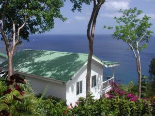 NATURE'S PARADISE: Amazing Views & Paradise Pool! - Marigot Bay vacation rentals