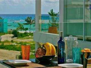 The Elements Penthouse 3 - ELPH3 - Yucatan-Mayan Riviera vacation rentals