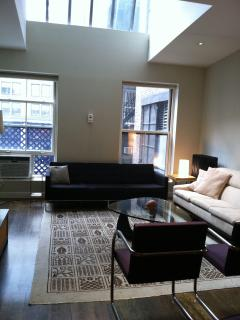 Huge Flatiron/Union Sq 3 Bedroom, 2 B Loft for 1-8 - Manhattan vacation rentals