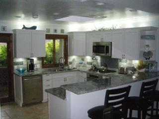 Upgraded kitchen - Balboa Peninsula condo with 360 rooftop view - Newport Beach - rentals