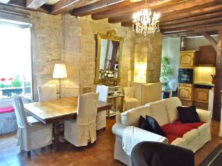IN PRIME, SAFE AND FRIENDLY QUARTERS OF THE HISTORICAL CITY CENTER OF DIJON - Dijon vacation rentals