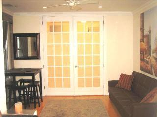 Brand new, Euro Style 1 Bedroom Custom Furnished - New York City vacation rentals