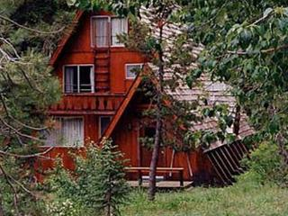 Barry Cabin Vacation Rental - Alpine Meadows vacation rentals