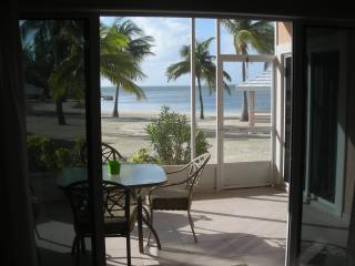 patio view - Beachfront,Step from Your Porch Onto the Sand - Rum Point - rentals