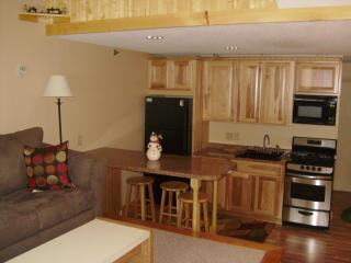 Slopeside Condo Fall Line at Sunday River Ski Area - Sunday River Area vacation rentals
