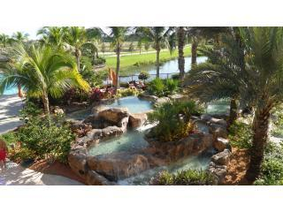 Community Pool - IN CONTRACT - NO LONGER AVAILABLE - Fort Myers - rentals