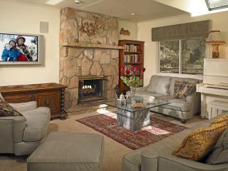 Living Room - Luxury Townhouse in the Heart of Aspen - Aspen - rentals