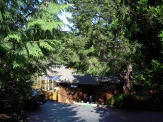 FromTopofDriveway - Frank's Place in Point Reyes - Inverness - rentals