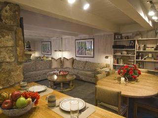 ChRoar14 - Aspen vacation rentals