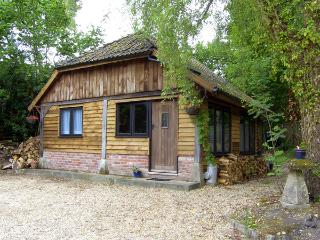 ENDYMION, pet friendly, country holiday cottage, with open fire in Linwood, Ref 3575 - Hampshire vacation rentals