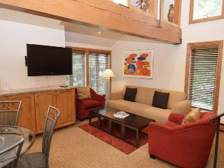 OldHund104 - Aspen vacation rentals